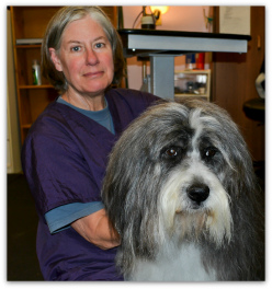 Sydney Brooks with Bearded Collie